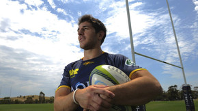 Cubelli buzzing for first crack in Brumbies jersey
