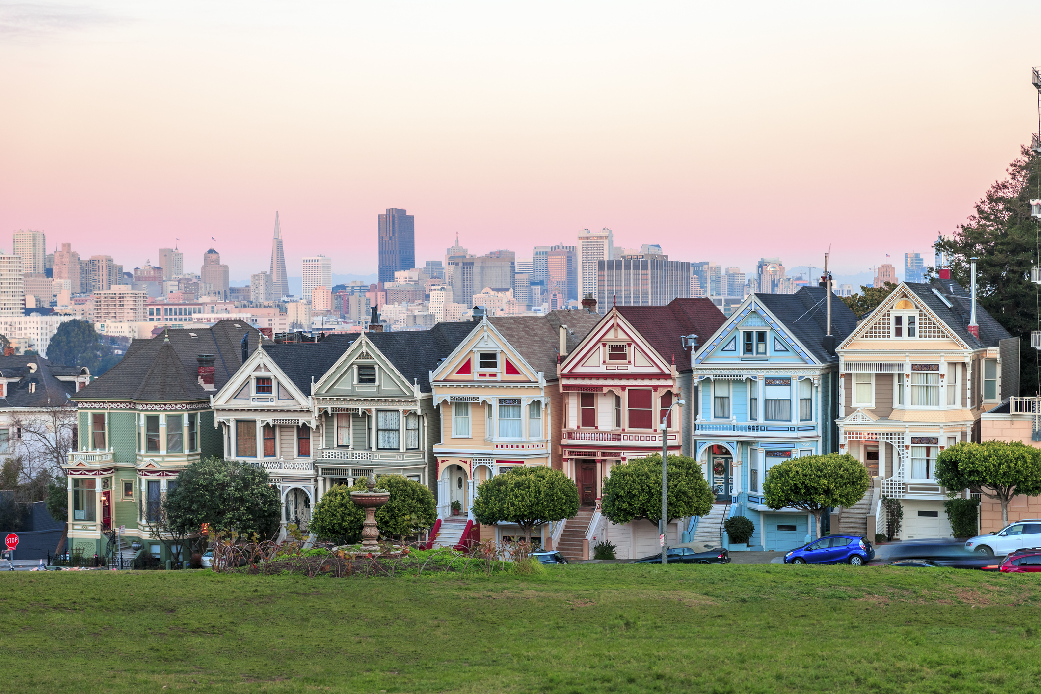 Painted Ladies 1.jpg