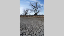 Cool, wet spring may ease western Plains drought