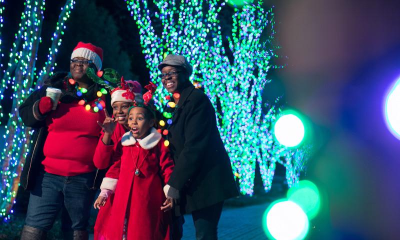 Garden Lights, Holiday Nights illuminates Atlanta Botanical Garden.