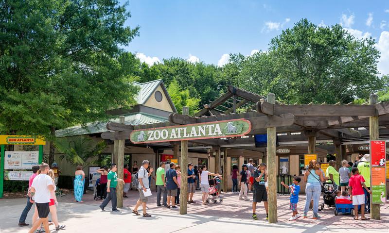 Kids will learn a lot while having fun at Zoo Atlanta. (📷 Gene Phillips, AtlantaPhotos.com)