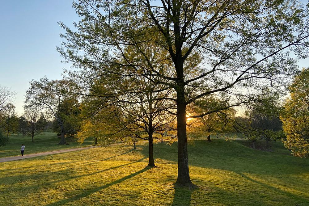 John Lewis Freedom Park - Outdoor Atlanta Staycation Idea