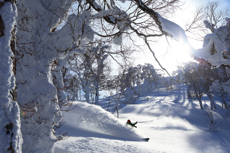 wes4369ag-192046-Snowboarder.jpg