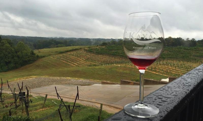 Enjoy Kaya's patio, which overlooks its beautiful vineyards.