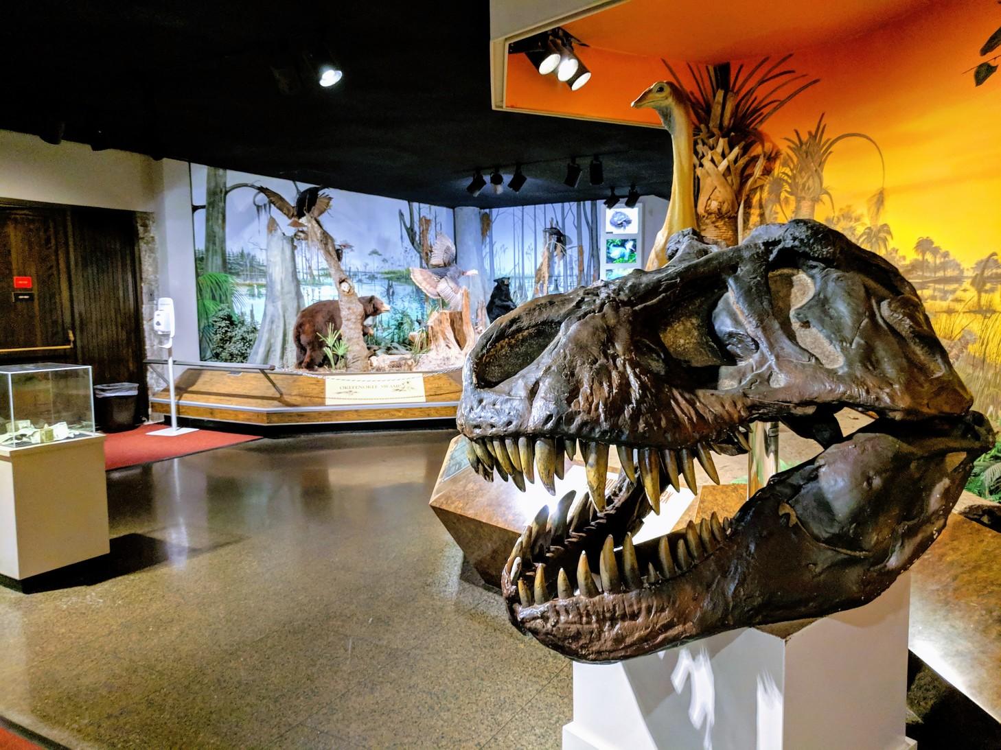 AtlantaFernbankMuseum.jpg