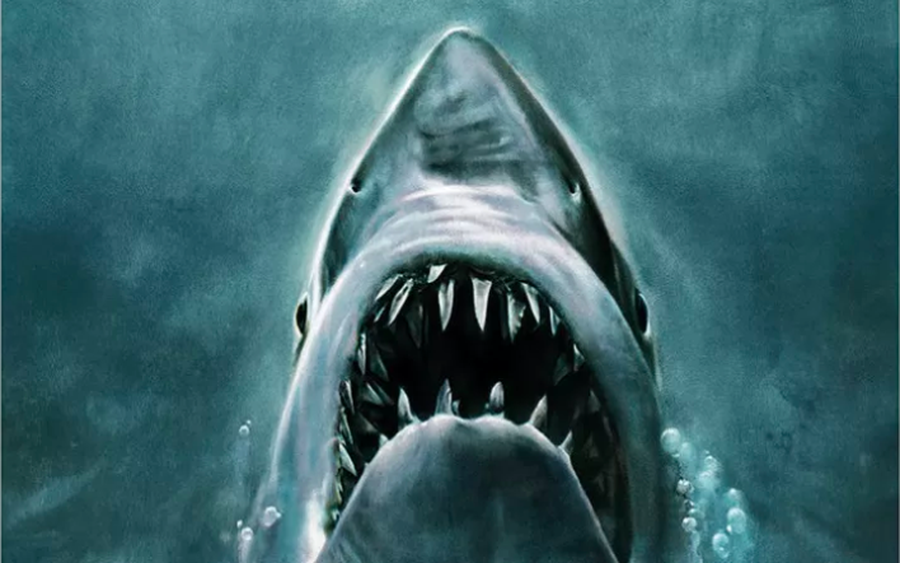 The Top 4 Jaws Movies of All-Time - AT&T Entertainment News