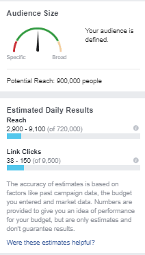 Facebook Ad Manager Audience.png