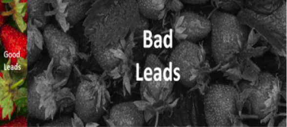 bad leads strawberries.png