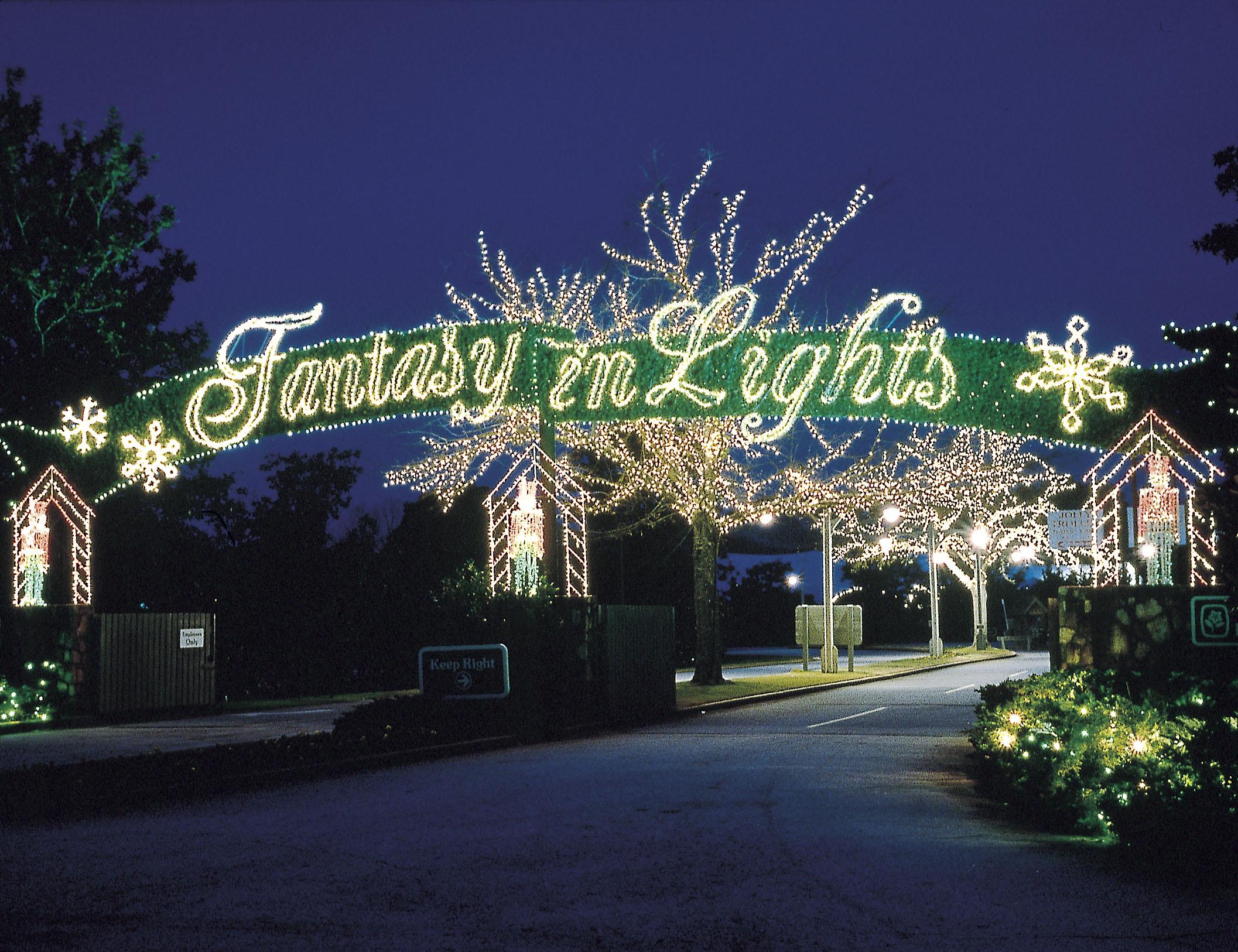 Fantasy in Lights - Copy.jpg