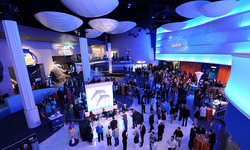 Atlanta Aquarium Meetings Blog