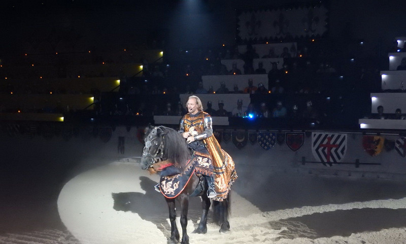 Root for your favorite knight to win the heart of the princess at Medieval Times.