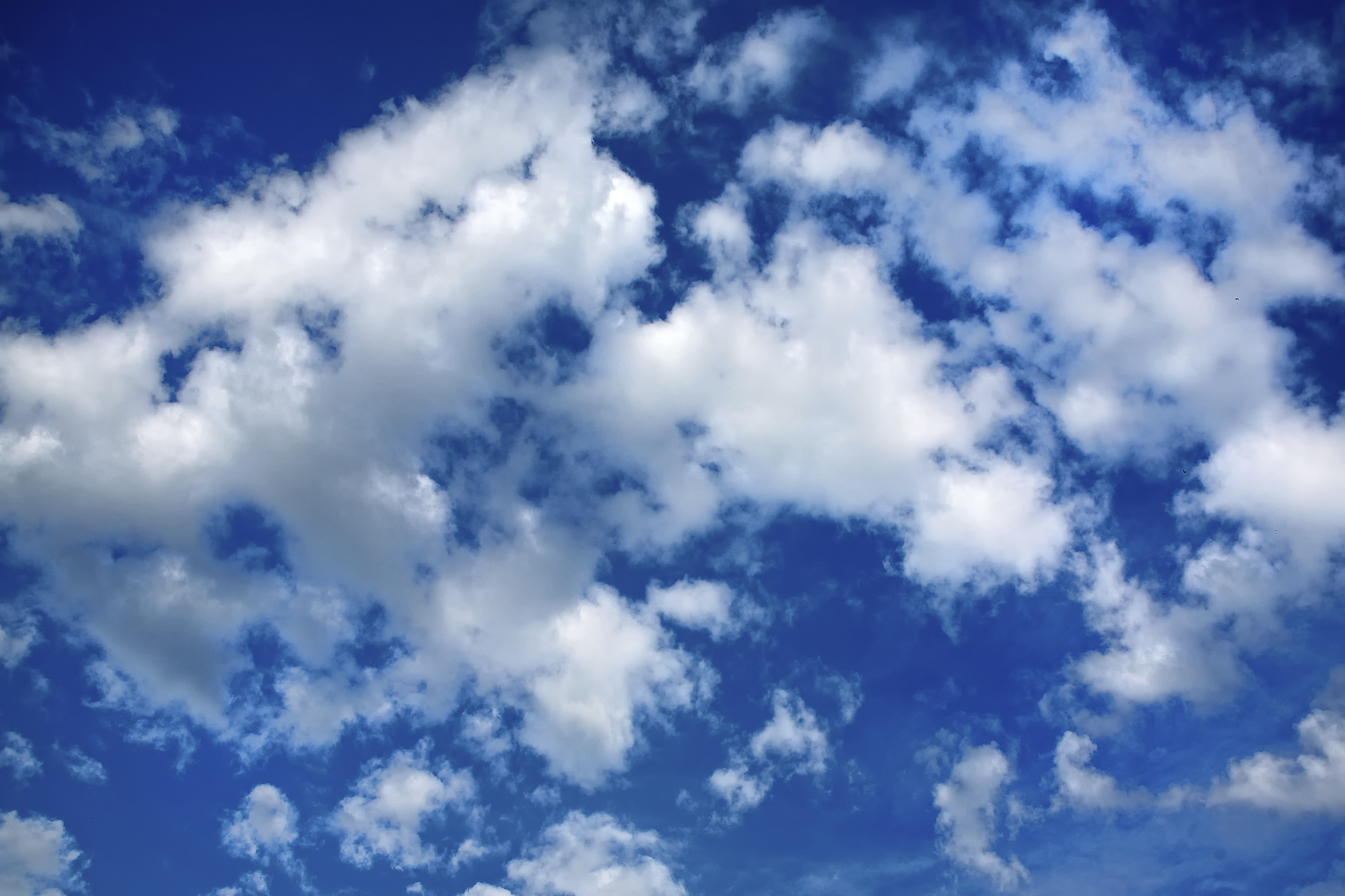 SaaS Valuations Deserve Their Place In The Clouds