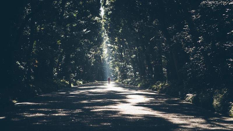 Content Marketing and the Path to Predictability.jpeg