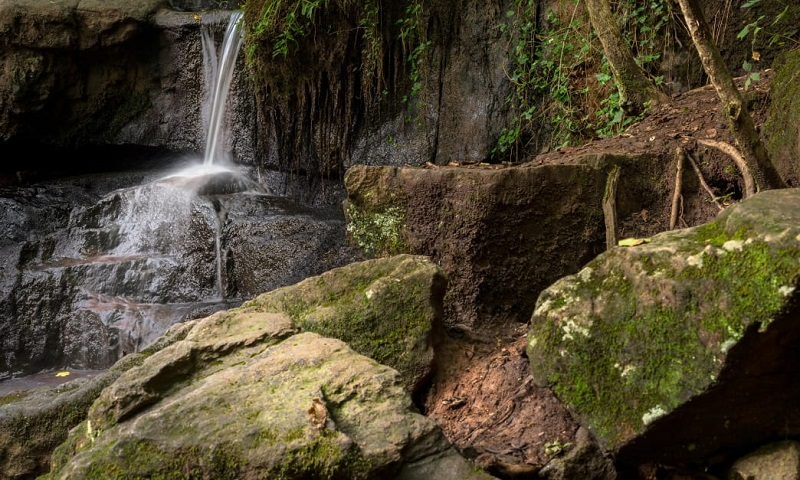 Find this waterfall at Cascade Springs Nature Preserve.