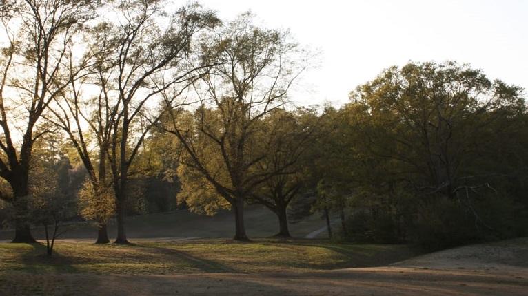 Chastain Park in Atlanta Buckhead Neighborhood